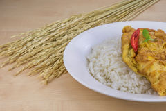 Omelet with Rice Stock Photo