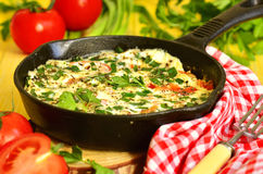 Omelet wih tomato,green onion and herbs. Stock Image