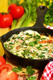 Omelet wih tomato,green onion and herbs. Royalty Free Stock Images