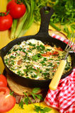 Omelet wih tomato,green onion and herbs. Stock Images