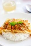 Omeleta com galinha do incêndio e arroz cozinhado Foto de Stock Royalty Free