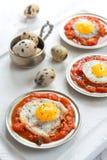 Omelett av vaktelägg Arkivfoto