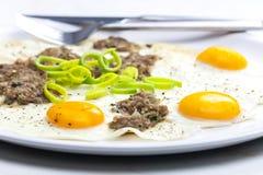 Omelette bosniaca Immagine Stock Libera da Diritti