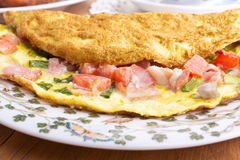 Free Omelette Close Up Stock Photo - 9851480