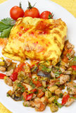 Omelette filled with meat and vegetable. On plate Stock Image