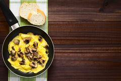 Omelette with Mushroom. Homemade omelette with mushroom in frying pan with slices of bread on the side, photographed overhead on dark wood with natural light stock photography