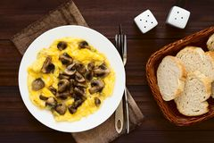 Omelette with Mushroom. Homemade omelette with mushroom with slices of bread on the side, photographed overhead on dark wood with natural light stock photos