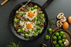 Omelette végétale avec l'oeuf et les pousses d'oeil de taureaux photographie stock libre de droits
