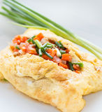 Omelette and vegetables. In white plate Stock Images