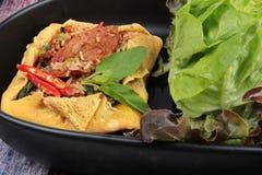 Omelettet stekte kryddig basilika med griskött, aubergine, linser, akacian, chi Royaltyfri Foto