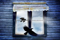 An omen. A dark forboding window with rays of light and a cloudy interior with two crows flying inside and outside. Atmospheric image to imply mystery.  Awning Royalty Free Stock Image