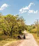 A typical view in Ometepe in Nicaragua stock photos