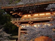 omfamnad daigoji Arkivbilder