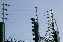 Omfattande grönt elektriskt staket Surrounding Residential Property Royaltyfria Foton
