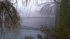 Omge för mystiker En bro i parkera Täckt med dimma och skönhet Arkivfoto