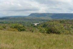 Omge floden Guayabero royaltyfri bild
