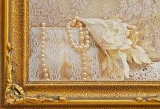 Omgeende pärlor för guld- ram på den antika handväskan Arkivbild