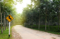 Omgekeerde draai verlaten tekens op de weg op de weg Stock Afbeeldingen