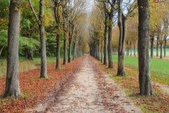 Omgeving van het Paleis van Fontainebleau, Frankrijk stock foto's