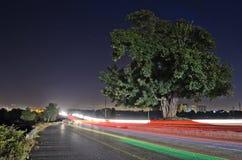 Omgivet av nattljus Arkivfoton