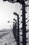 Omheining in Auschwitz Royalty-vrije Stock Afbeeldingen