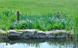 Omheining bij de vijver met bloemen. Royalty-vrije Stock Afbeeldingen