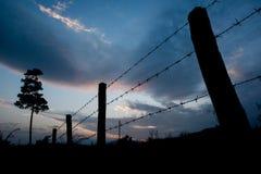 Omheining bij zonsondergang Stock Foto