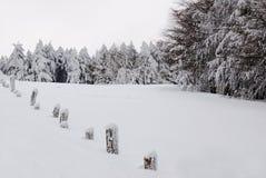 Omheining die met sneeuw wordt behandeld Stock Foto's