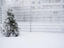 Omheining die met sneeuw wordt behandeld Snow-covered rooster stock foto