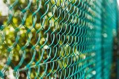 Omheining van groene dichte omhooggaand van het ijzernetwerk royalty-vrije stock fotografie