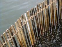 Omheining van riet in water stock fotografie