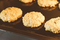 Omhoog gesloten van hete de rozijnenkoekjes van het bakselhavermeel op zwarte plaatpan in de oven, die rozijn en haver voor hoofd royalty-vrije stock foto