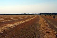 Omhoog het verpakken van oogst met grote strobalen stock afbeeldingen