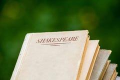 Omhoog Opgestapelde de Boeken van Shakespeare Royalty-vrije Stock Afbeelding