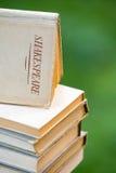 Omhoog Opgestapelde de Boeken van Shakespeare Stock Foto