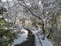 Omihachiman Mountain In Snow, Shiga, Japan stock image