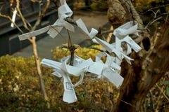 Omikuji a attaché à un arbre Images stock