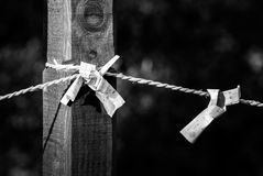 Omikuji tied to wire. Omikuji or random fortunes tied to wires in temple grounds Stock Photography