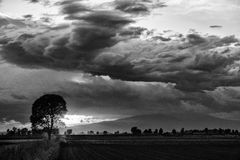 Ominous cloud formation. Dramatic sunset with a tree silhouette on the foreground stock photos