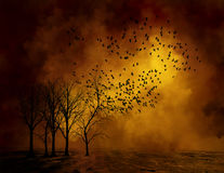 Ominous Dead Trees, Birds Background Stock Photo