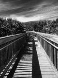Ominous Path. Taken in mono tone of path in Ponce Inlet royalty free stock photos