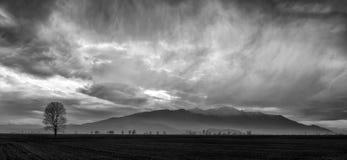 Ominous sky Stock Photography