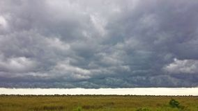 An ominous storm cloud forms over the Everglades. Ominous storm clouds forms over the flat landscape of the Florida Everglades Royalty Free Stock Images
