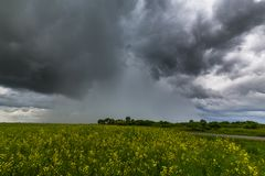 Ominous storm clouds and canola fields stock images