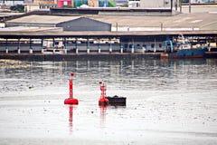 Omlastningterminalen för urladdning av cementlast förbi kusten sträcker på halsen En sikt av hytter med lastfartyg och vattenområ royaltyfri bild