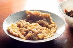 Omlette ägg, mat, lagat mat ris, thai lokal mat stekt ägg med arkivbilder