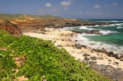 omomi mo molokai пляжа Стоковая Фотография RF