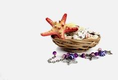 Omposition ¡ Ð с seashells и морские звёзды на белой предпосылке Стоковые Фото