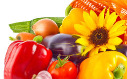 �omposition of vegetables spices and flower Stock Image