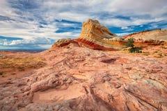 Område för bergvitfack av den nationella monumentet för cinnoberfärgklippor Royaltyfria Bilder